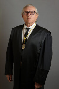 Ilmo. Sr. D. Diego Javier Liñán Nogueras, Vicepresidente